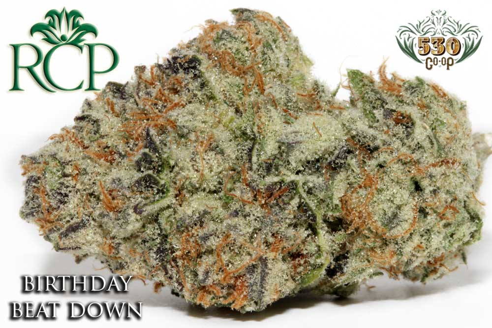 Sacramento Medical Marijuana Dispensary Cannabis Club Strain 530 GROWER BIRTHDAY BEAT DOWN