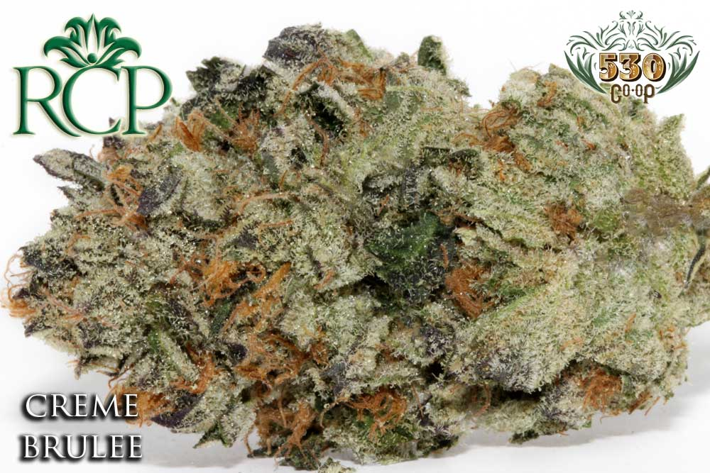 Sacramento MMJ Dispensary Strain 530 GROWER CREME BRULEE