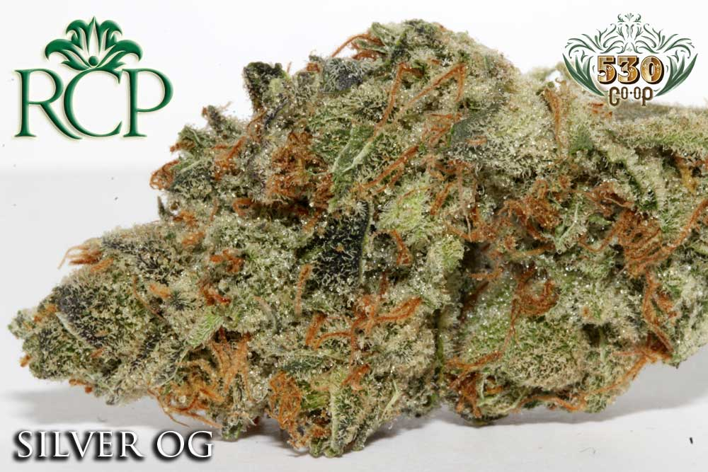 Sacramento MMJ Dispensary Strain 530 GROWER SILVER OG