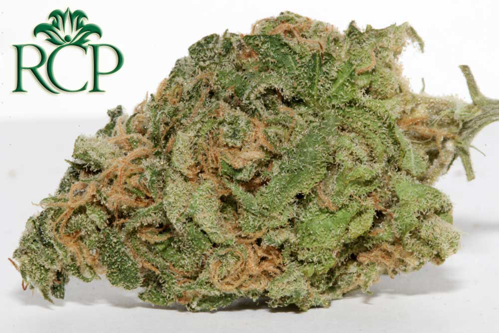 Sacramento Medical Marijuana Dispensary Cannabis Club Strain BLUE DREAM