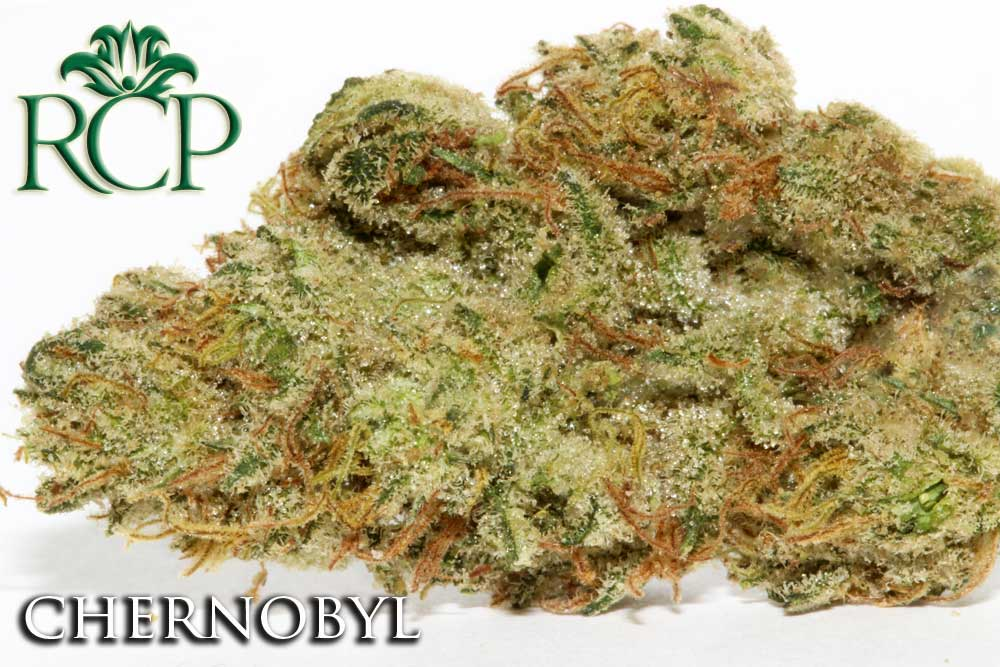 Sacramento Medical Marijuana Dispensary Cannabis Club Strain CHERNOBYL