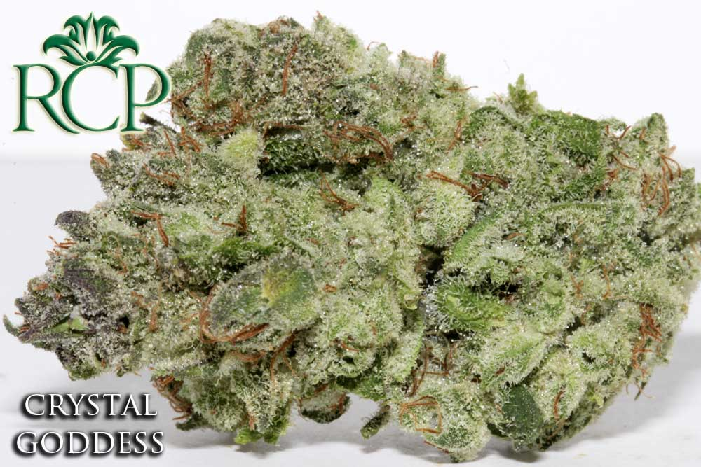 Sacramento MMJ Dispensary Strain CRYSTAL GODDESS