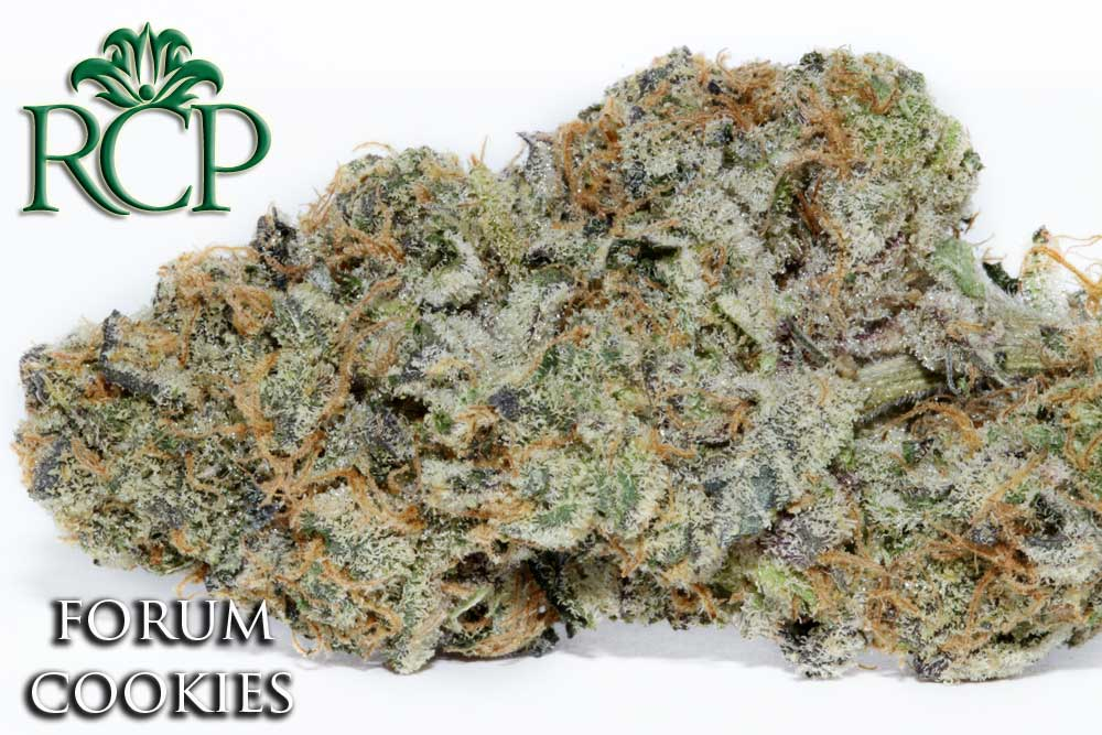 Sacramento Medical Marijuana Dispensary Cannabis Club Strain FORUM COOKIES