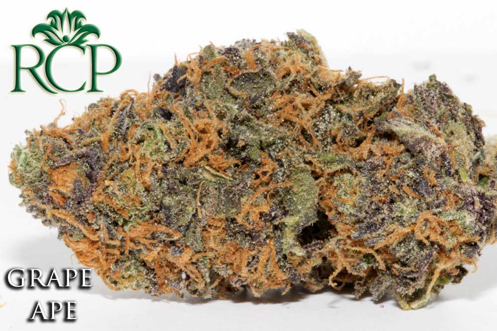 Sacramento Medical Marijuana Dispensary Cannabis Club Strain GRAPE APE