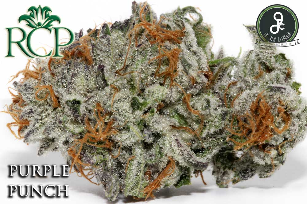 Sacramento MMJ Dispensary Strain GREENDAWG PURPLE PUNCH