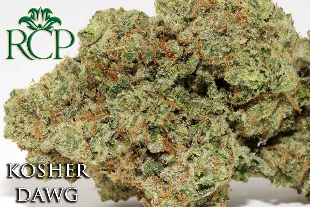 Sacramento Medical Marijuana Dispensary Cannabis Club Strain KOSHER DAWG