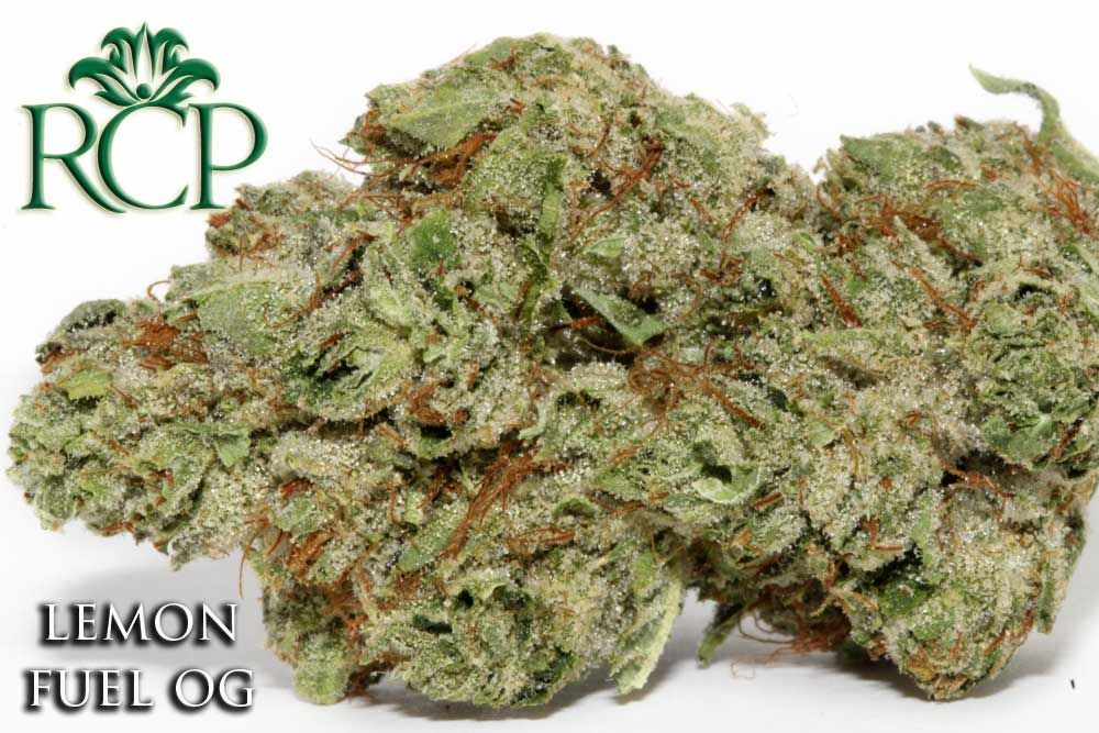 Sacramento Medical Marijuana Dispensary Cannabis Club Strain LEMON FUEL OG