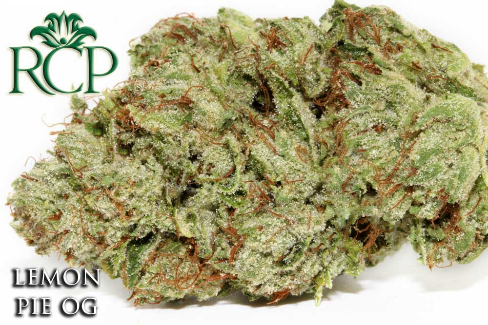 Sacramento Medical Marijuana Dispensary Cannabis Club Strain LEMON PIE OG