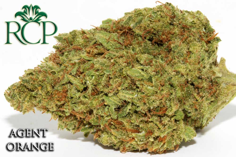 Sacramento Medical Marijuana Dispensary Cannabis Club Strain AGENT ORANGE