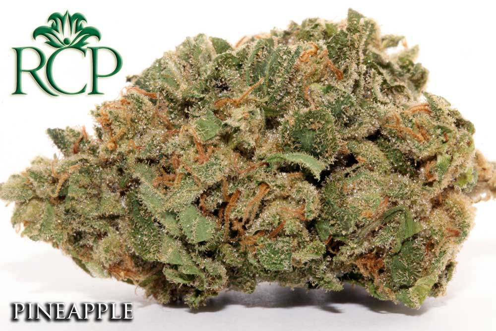 Sacramento Medical Marijuana Dispensary Cannabis Club Strain PINEAPPLE
