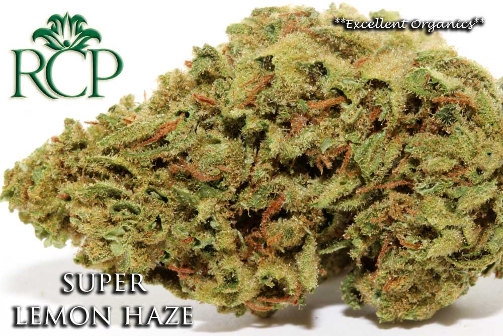 Sacramento Medical Marijuana Dispensary Cannabis Club Strain SUPER LEMON HAZE