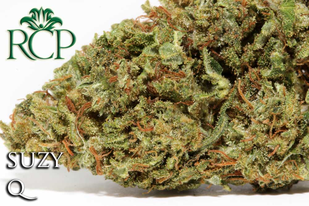 Sacramento Medical Marijuana Dispensary Cannabis Club Strain SUZY Q