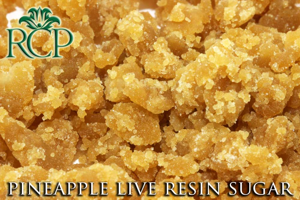 Sacramento Medical Marijuana Dispensary Cannabis Club Strain PINEAPPLE LIVE RESIN SUGAR