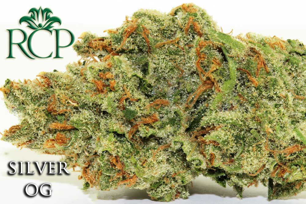 Sacramento Medical Marijuana Dispensary Cannabis Club Strain SILVER OG