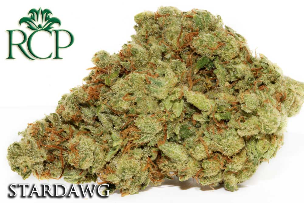 Sacramento Medical Marijuana Dispensary Cannabis Club Strain STARDAWG