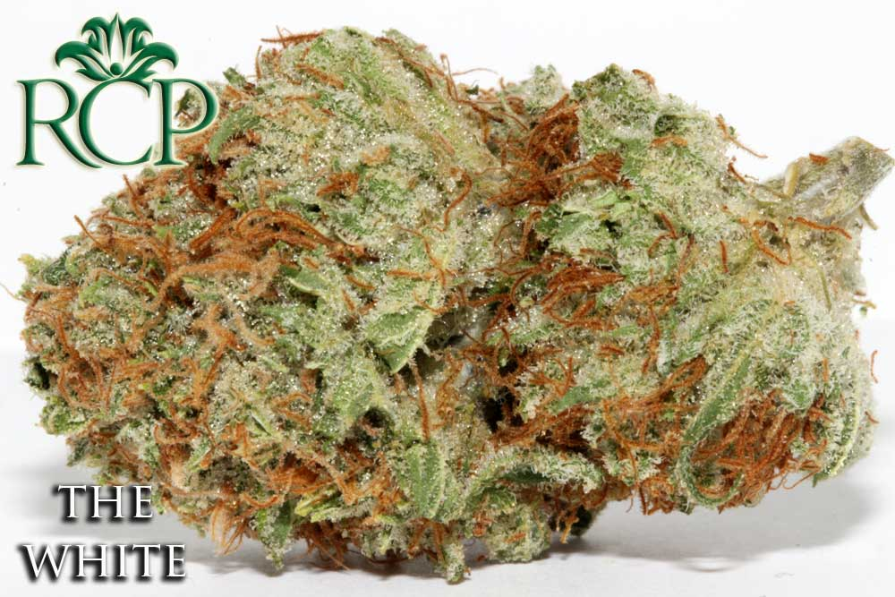 Sacramento MMJ Dispensary Strain THE WHITE
