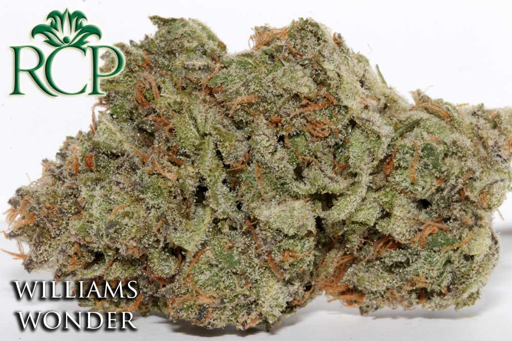 Sacramento MMJ Dispensary Strain WILLIAMS WONDER
